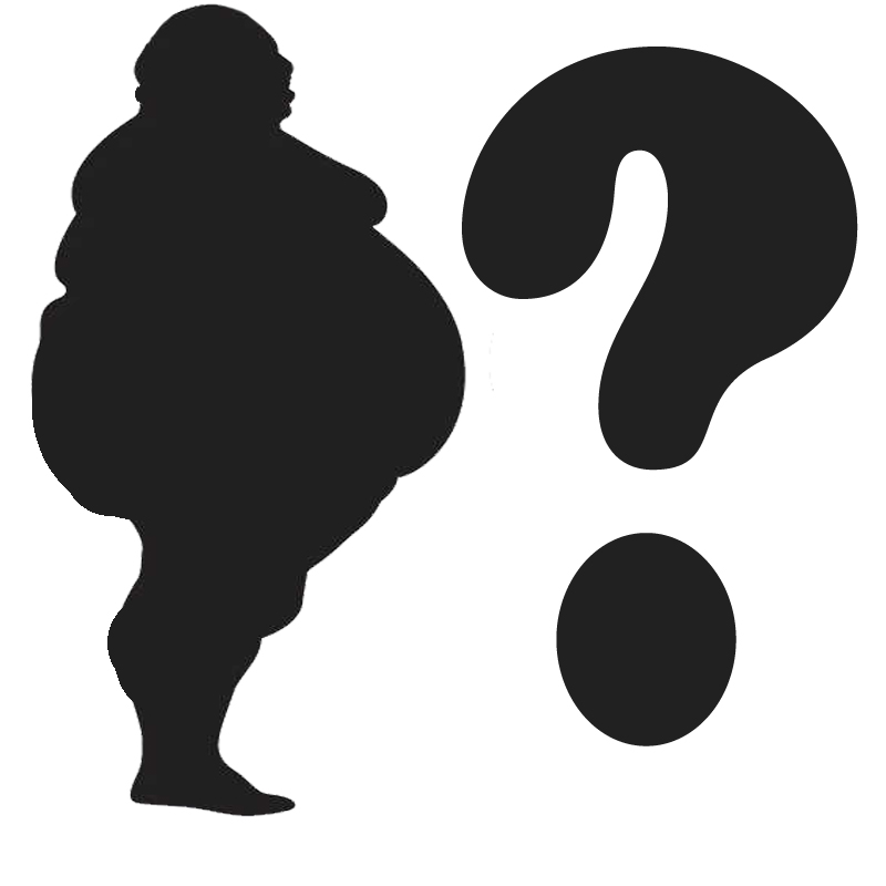 What makes Nigerians and others, fat?